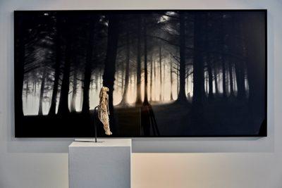 Pressefoto Ausstellungsansicht (1) Warum Kunst, kunsthalle weishaupt, Foto Henry M. Linder