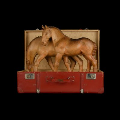 45-Pferdekoffer - Kopie