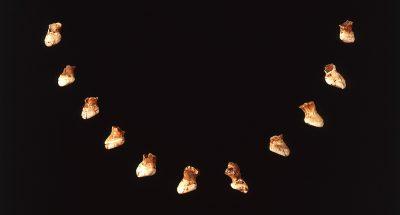 Fischzahnkette Hohlenstein-Stadel Kette aus Schlundzähnen des Perlfisches. Beigabe der Kopfbestattung aus der Stadel-Höhle am Hohlenstein (7. Jahrtausend v.Chr.), Foto: Stadtarchiv  Ulm, W. Adler